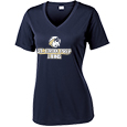 Ladies V-Neck Performance T-shirt