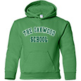 Youth Hooded Sweatshirt- Applique