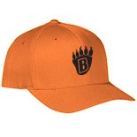 Flexfit Baseball Hat