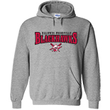Hooded Sweatshirt - BWYBA logo