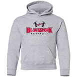Youth Hooded Sweatshirt - Baseball Logo